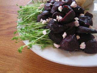 Roasted Beet Salad with Pea Sprouts