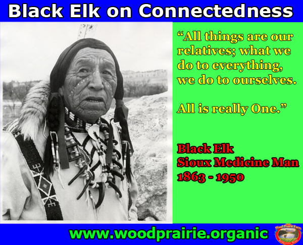 blackelk meme