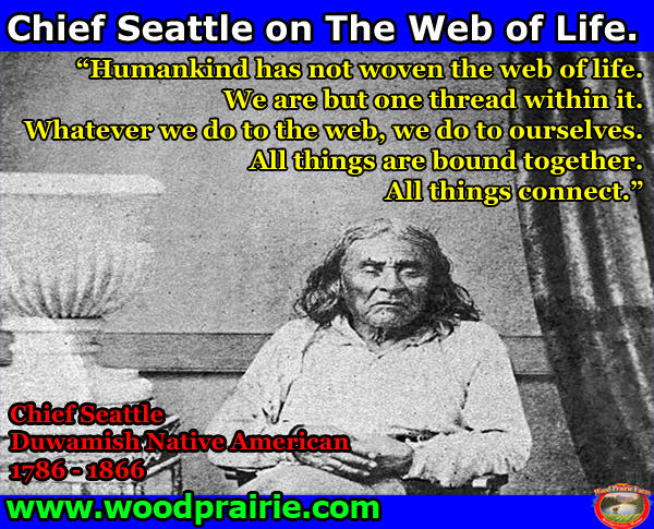 chief seattle meme