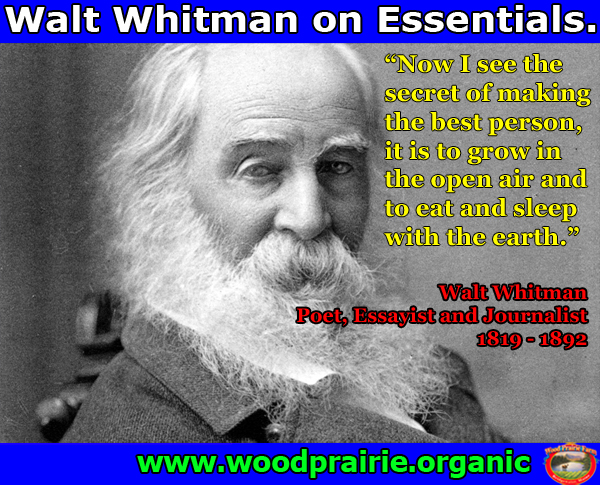 waltwhitman FBcopy