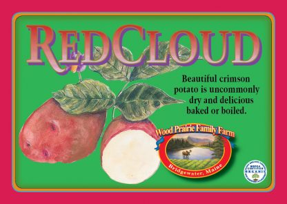 Organic Red Cloud Potatoes for the Kitchen.