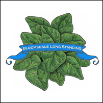 Spinach Seed. Organic Bloomsdale Long Standing. Pkt.