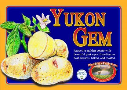 Organic Yukon Gem Potatoes for the Kitchen.