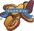 Bean (Dry) Seed. Organic Tiger Eye. Heirloom.