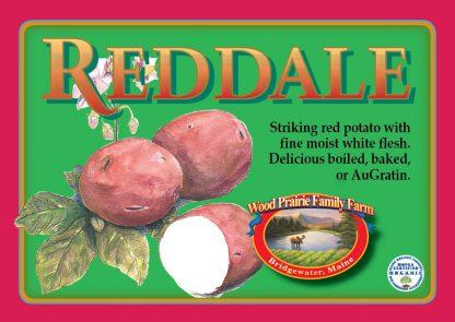 Reddale Label. Striking red potato with fine moist white flesh.
