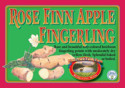 Organic Certified Rose Finn Apple Seed Potatoes