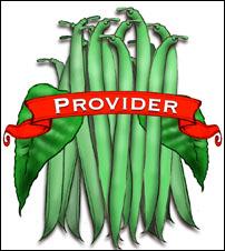 Bean Seed, Organic Provider. Pkt.