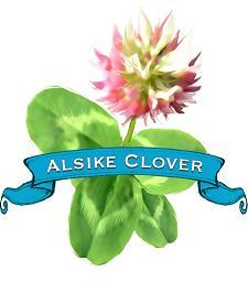 Alsike Clover label.