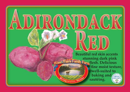 Organic Certified Adirondack Red Seed Potatoes