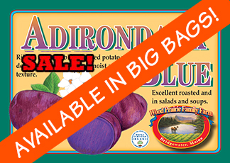Organic Certified Adirondack Blue Seed Potatoes