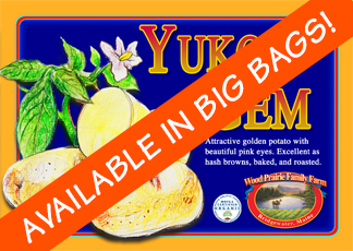 Organic Certified Yukon Gem Seed Potatoes