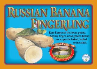 Organic Russian Banana Fingerling Potatoes. Heirloom.