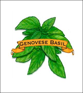 Genovese basil label.