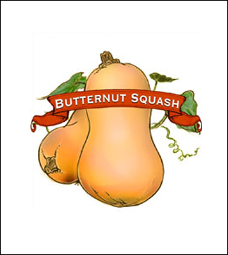 Squash Seed. Organic Winter Waltham Butternut. Pkt.