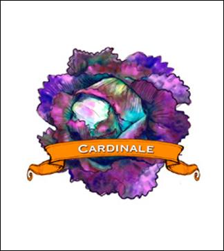 Lettuce Seed. Organic Cardinale. Pkt.
