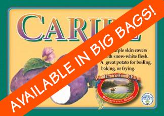 Organic Certified Caribe' Seed Potatoes