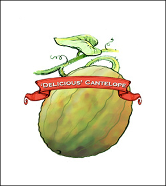 Melon Seed. Organic Delicious 51. Pkt.