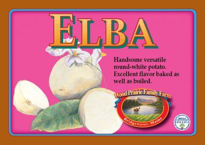 Elba label. Handsome versatile round white potato.
