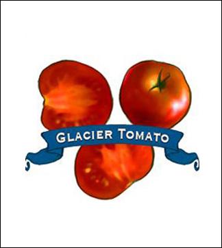 Tomato Seed. Organic Glacier. Pkt.