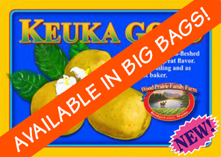 Organic Certified Keuka Gold Seed Potatoes