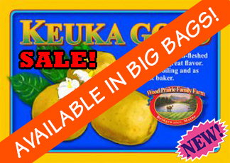 Organic Certified Keuka Gold Seed Potatoes