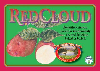 Red Cloud label. Beautiful crimson potato.