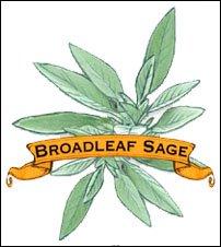Herb Seed. Organic Broadleaf Sage. Pkt.