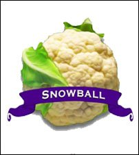 Cauliflower Seed. Organic Snowball. Heirloom. Pkt.