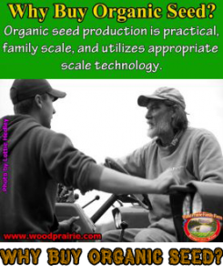 Why buy organic seed?