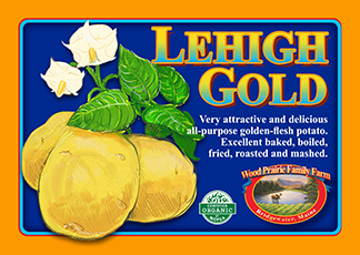Organic Certified Lehigh Gold Seed Potatoes