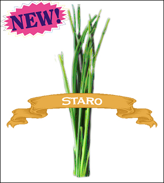 Herb Seed, Organic Staro Chives. Pkt.