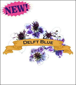 Flower Seed, Organic Delft Blue Nigella. Pkt.