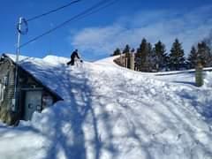 May be an image of ski slope