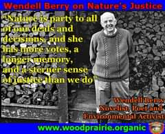 May be an image of 1 person and text that says 'Wendell Berry on Nature's Justice Nature is party to all of our deals and decisions and she has more votes, a longermemory, anda sterner sense of justice than we do' Wendell Berry Novelist, Poet and Environmental Activist www.woodprairie.organic'