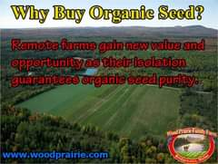 May be an image of grass and text that says 'Why Buy Organic Seed? Remote farms gain new value and opportunity as their isolation guarantees organic seed purity Wood Praine amly arm www.woodprairie.com'