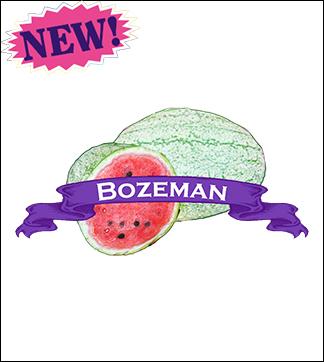 Melon Seed, Organic Bozeman Watermelon. Pkt.