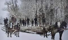 May be an image of one or more people, people standing, horse and outdoors