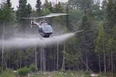 May be an image of aircraft and outdoors