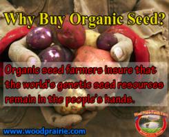 Why Buy Organic Seed Logo